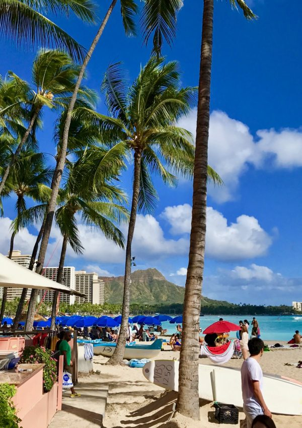 Five Faves to Explore in Honolulu, Hawaii