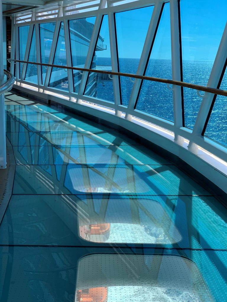 Majestic Princess - The Sea Walk - Princess Cruises - Giddy Guest