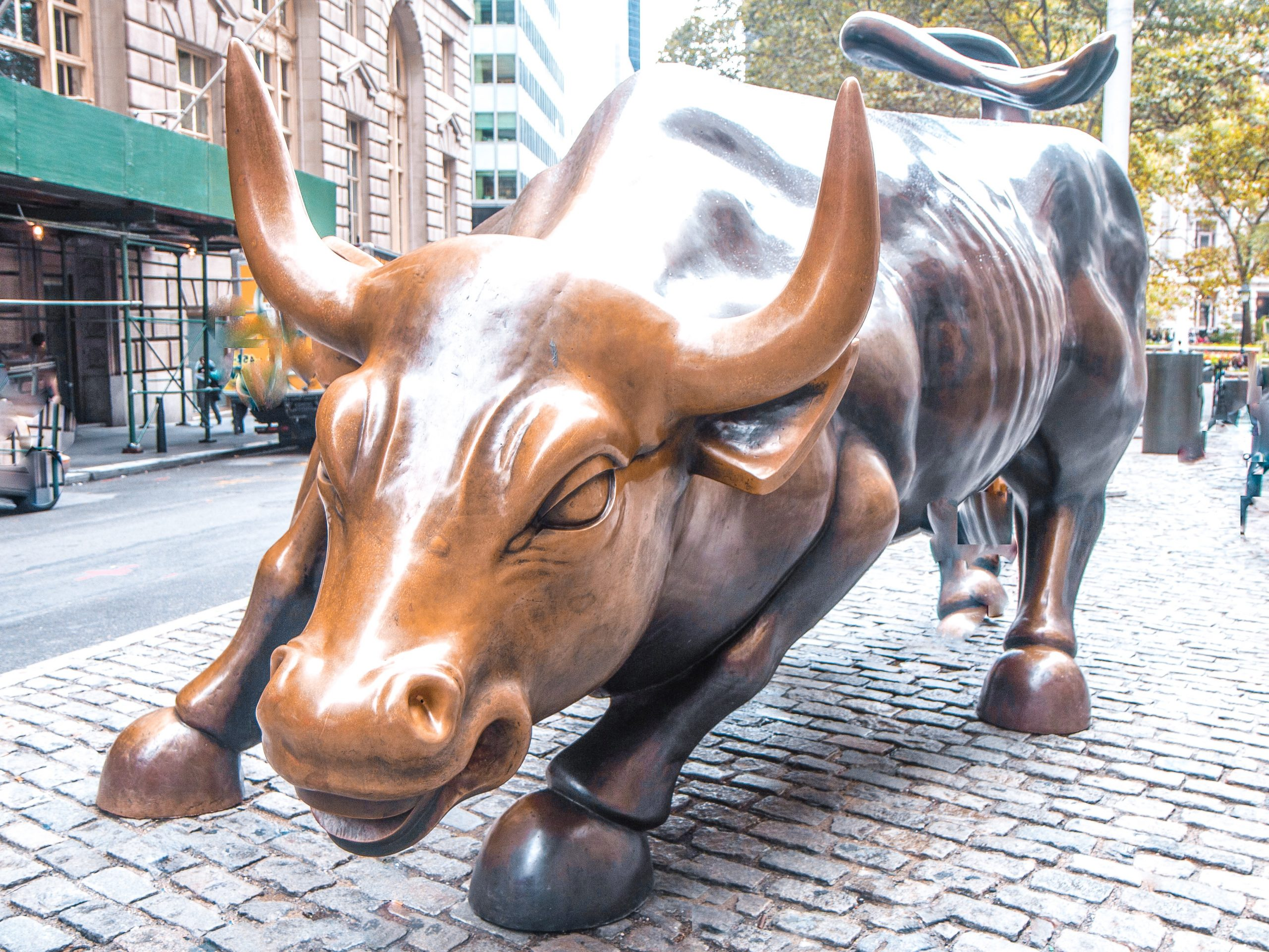 Charging Bull, New York - Giddy Guest