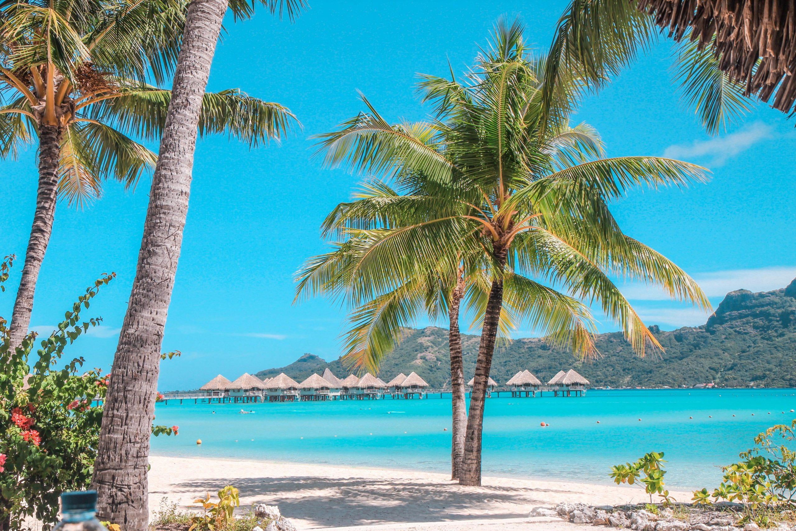 Bora Bora - Le Meridien - Giddy Guest